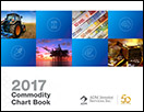 chartbook_2017_icon
